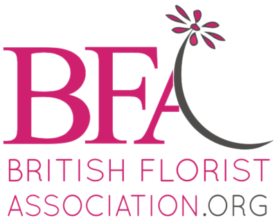 Bfa Plan Logo